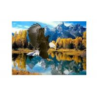 Quality High Definition 3D Lenticular Pictures Stock PET Pictures Offset Printing for sale