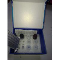 Buy cheap Rat Advance Glycation End Product(AGEs)Elisa Kit(competitive) from wholesalers