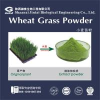 Quality 100% watersoluble wheatgrass extract wheat grass powder for sale