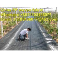 Quality high quality export America pp weed control cover /weed barrier/ground cover for sale