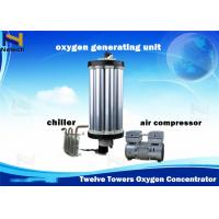 China 100% Twelve Towers PSA Gas Equipments Type Oxygen Concentrator Repair 3 - 15L on sale