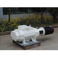 China ZJ Series Roots Vacuum Pump/Roots Vacuum Blower/Roots Vacuum Booster on sale
