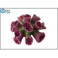 Quality Beautiful Aquarium Decoration , Colorful Artificial Resin Coral Reef Ornaments for sale