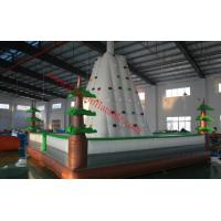 Quality inflatable climbing wall inflatable rock climbing wall climbing wall inflatable climbing for sale