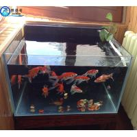 Buy 3mm - 19mm Custom Fish Tanks , Tranparent Glass Aquarium Fish Tank at wholesale prices