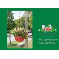 Quality Self Watering Hanging Flower Baskets / Hanging Baskets For Plants for sale