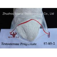 Quality Anabolic Strongest Testosterone Steroid Propionate CAS 57-85-2 for Bodybuilding for sale