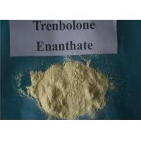 Quality Pharmaceutical steroids trenbolone enanthate 200mg/ml for injectable muscle gain oils for sale