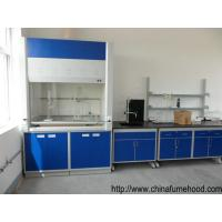 Quality China Cheap Laminar Flow Fume Hood in Laboratory Ventilation System for sale