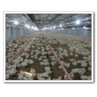 Buy cheap Automatic Poultry Farming Equipment from wholesalers