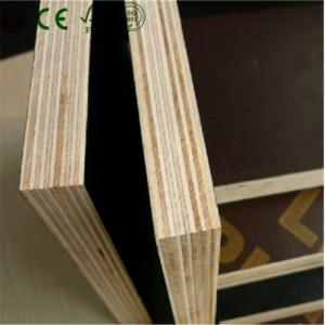 China 20mm Film Faced Plywood on sale