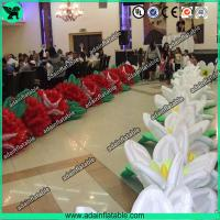 Quality Birthday Event Inflatable Flower,Birthday Party Inflatable,Inflatable Flower Chain for sale