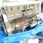 Quality Cummins Machinery Diesel Engine M11 engine assembly cummins m11 engine for sale