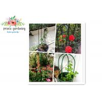 Quality Eco Friendly Solid Durable Green Ushape Pipe Flower Support Garden Plant Supports for sale