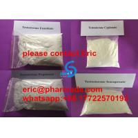 Quality Efficient Delivery Test E Bodybuilder Lean Muscle Injectable Steroid Testosterone Enanthate 250mg/ml for sale