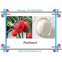Buy cheap White Powder Paclitaxel Plant Exact As Chemotherapy Drug CAS 33069-62-4 from wholesalers
