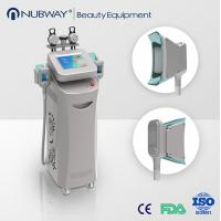 Quality 2014 newest beauty Cryolipolysis Slimming Machine for sale for sale