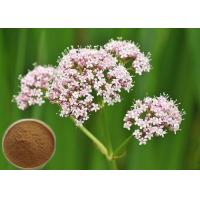 Quality Natural Valerian Root Extract, 0.8% Valeric Acid for Antibacterial and antiviral CAS 8057-49-6 for sale