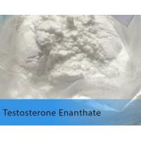 Quality White Testosterone Anabolic Steroid Testosterone Enanthate Test E Powder for sale
