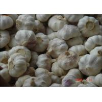 Quality 2016 Chine new crop agricultural garlic organic fresh white garlic for sale