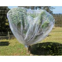 Quality Fruit Tree Net, 20-50mesh,0.5-6.0m,green and white,protect the trees,Agricultural Plastic Products for sale