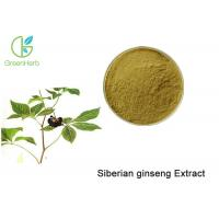 Quality Brown Powder Natural Plant Extracts / Siberian Ginseng Root Extract Anti - Fatigue for sale