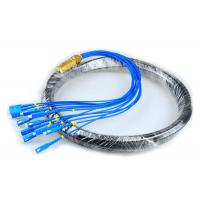 Quality CATV Network Optical Fiber Pigtail 12 Core Fiber Outdoor SC Pigtail Waterproof for sale