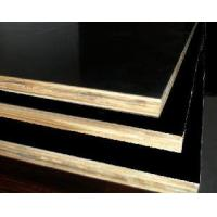 China Birch Film Faced Plywood on sale