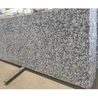 Buy G640 Bianco Sardo Granite Stone Kitchen Worktops Customized Size at wholesale prices
