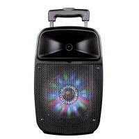 Buy 12 Inch Bluetooth Function Rechargeable Portable Trolley Speakers With Led Lights at wholesale prices