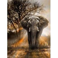 """Buy Full Round Drill 5D DIY Diamond Painting """"elephant"""" handmade 3D Embroidery arts Cross Stitch Mosaic Decor gift at wholesale prices"""
