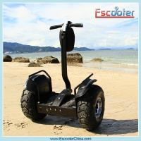 Quality Eye-Catching Self-Balancing Personal Transporters,Two Wheeled Scooter ESOI L1 for sale