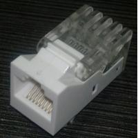 Quality Tolless type Cat5e Keystone Jack for sale