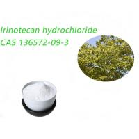 Quality Irinotecan Hydrochloride / Irinotecan HCL CAS 136573-09-3 For Drugs for sale