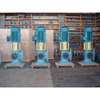 China 3GCLS Double Suction Vertical Screw Pump on sale