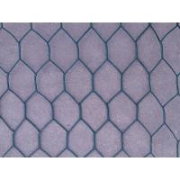Quality Garden PVC Coated Hexagonal Netting Fence 25mm with 20 gauge wire for sale