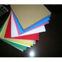 China PP Plastic Hollow Board on sale