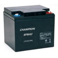 Quality Maintenance Free 12v 42ah AGM VRLA High Rate Discharge Battery 6FM42H for sale