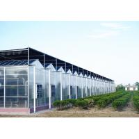 Large Aluminium Polycarbonate Greenhouse Gutter Height 3.0-6.0m Easy Assemble for sale