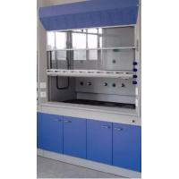 China High Temperature Resistant Laboratory Fume Hood For Large Laboratory Instruments on sale