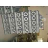 Quality 20mm Galvanized Poultry Netting Fencing /  0.8mm wire gauge Chicken Houses Runs for sale