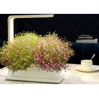 Quality Decorative 12V 9W PP Home Hydroponic Growing Systems for sale