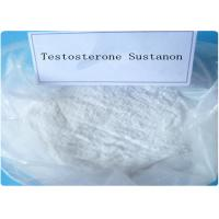 Quality High Purity Test Sustanon 250 , Testosterone Steroid Hormone white Powder for sale