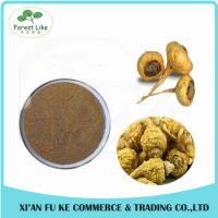 China Herbal Sex Powder Men Health-care Anti-fatigue Product Maca Root Extract Powder on sale