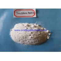 Quality Trestolone Acetate Powder TRT Steroids Androgen Replacement Therapy 99% Assay for sale
