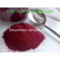 China dehdyrated red beet root powders 100 mesh on sale
