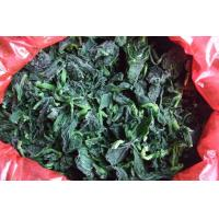 China (IQF)Frozen Spinach on sale