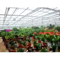 Flower Exhibition Multi Span Greenhouse , High Output Polycarbonate Sheet Greenhouse for sale