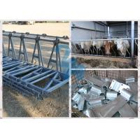 Buy Hot-dip galvanized Head Lock Fence Panel for Cattle Ranch / Sheep at wholesale prices