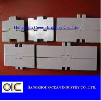 Quality Plastic Flat Top Chain , type 828 , 831 for sale